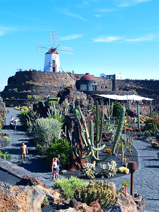 Jardin de cactus kaktusgarten lanzarote spanien for Jardin de cactus lanzarote
